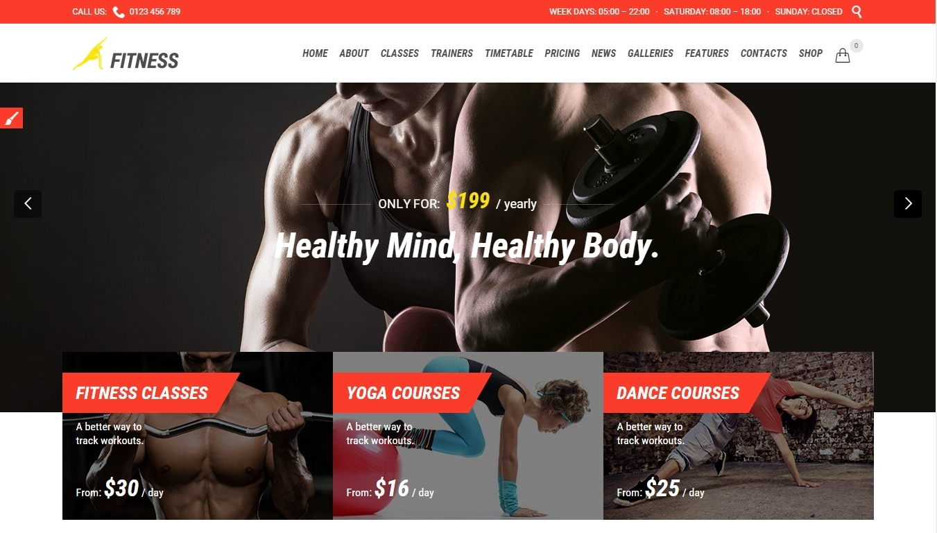 Premium Fitness WordPress Themes For Sports