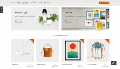 WordPress Store Themes